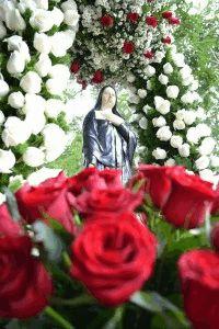 Santa Paulina, rogai por nós!