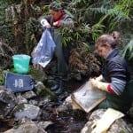 Coleta de materiais no Rio Canoas em ambiente de Floresta Ombrófila Mista, em Urubici.